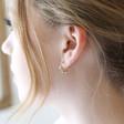 Small Crystal Orb Hoop Earrings in Gold on Model