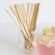 Lisa Angel Zuperzozial Pack of 60 Wheat Straws