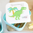 Sass & Belle Set of 3 Roarsome Dinosaurs Lunch Boxes