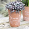 Lisa Angel Ladies' Floral 'Grandma's Garden' Terracotta Plant Pot