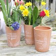 Lisa Angel Floral Terracotta Plant Pots