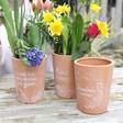 Lisa Angel Stone Floral Terracotta Plant Pots