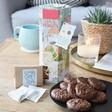 Lisa Angel ARTHOUSE Unlimited Earl Grey Tea & Orange Choc Chip Biscuits