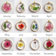 Lisa Angel Birth Flower Charms