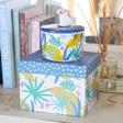 House of Disaster Savannah Monkey Jar Packaging