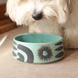 Lisa Angel Ceramic Mint Green and Black Dog Bowl