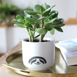Lisa Angel Cute Ceramic Sloth Planter