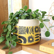 Lisa Angel Large Ceramic Sunshine Planter