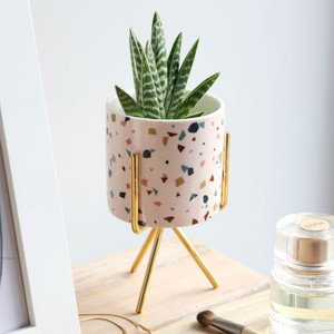 Terrazzo Print Mini Planter and Stand