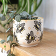 Lisa Angel Sass & Belle Busy Bees Stamped Small Planter