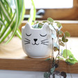 Lisa Angel Sass & Belle Cat's Whiskers Mini Planter