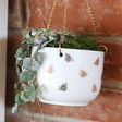 Ladies' Sass & Belle Queen Bee Hanging Planter