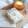 The Candle Brand Wax Melts and Burner Gift Set