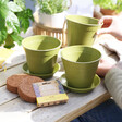 Lisa Angel Mini Meadow Gift Set Bamboo Pots