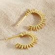 Ladies' Gold Sterling Silver Sunbeam Hoop Earrings