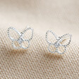 Ladies' Sterling Silver Sparkle Cut Butterfly Stud Earrings