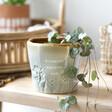 Glazed Ombré Amazing Mum Planter