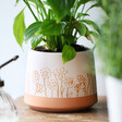 Lisa Angel Ceramic Carved Wildflower Planter
