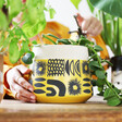 Bright Large Ceramic Sunshine Planter from Lisa Angel