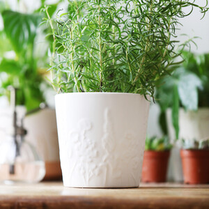 Ceramic Raised Wildflower Planter, H12cm