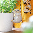 Quirky Sloth Planter Hanger