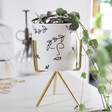 Lisa Angel White Face Print Mini Planter and Stand