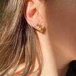 Lisa Angel Ladies' Mismatched Fish and Shell Earrings in Gold on Model