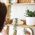 Lisa Angel Ceramic Sleepy Sloth Planter on a shelf