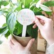 Lisa Angel Laser Cut Personalised Rainbow Acrylic Plant Sign