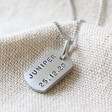 Lisa Angel Unisex Personalised Hand-Stamped Stainless Steel Dog Tag Necklace
