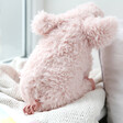 Lisa Angel with Fluffy Jellycat Curvie Pig Soft Toy