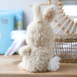 Lisa Angel with Fluffy Jellycat Little Bunny Soft Toy