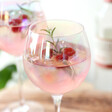 Lisa Angel Set of Two Iridescent Gin Glasses