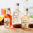 Lisa Angel 4cl Bottle of Seville Marmalade Gin with Other 4cl Bottles
