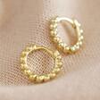Lisa Angel Gold Sterling Silver Dotted Huggie Hoop Earrings