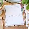 Carpe Diem Budget Planner Debt Tracking Page