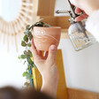 Lisa Angel Sass & Belle Mini Frida Khalo Terracotta Planter