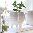 Ladies' Sass & Belle Mojave Glaze Grey Planter