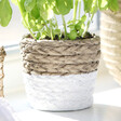 Lisa Angel Boho Sass & Belle White Dip Cement Basket Planter