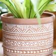 Sass & Belle Geometric Terracotta Planter