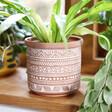 Lisa Angel Sass & Belle Geometric Terracotta Planter