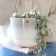 Lisa Angel with Sass & Belle Grey Mojave Glaze Hanging Planter