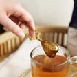 Ladies' Sass & Belle Heart Tea Infuser