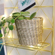Sass & Belle Woven Seagrass Planter in Small