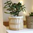 Sass & Belle Speckled White & Woven Planter