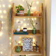 Sass & Belle Wooden Cheese Plant Photo Frame on Shelf