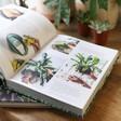 Plant Tips Wild Creations Book Lisa Angel