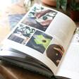 Craft Ideas Wild Creations Book Lisa Angel