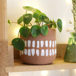 Terracotta Hangable Planter