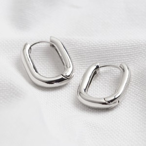 Silver Small Oval Tube Hoops